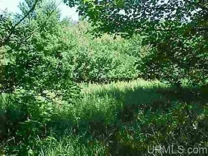 Lots And Land for sale in TBD Off Center, Munising, MI, 49862