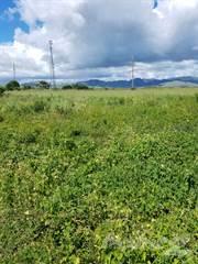 Land for sale in Sector Lanausse, Salinas, PR, 00751