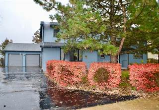 Single Family for sale in 120 Bush Drive, Elwood, IL, 60421