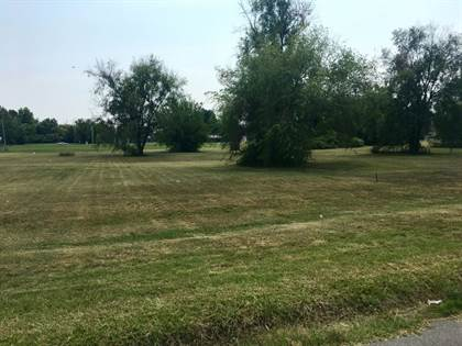 Lots And Land for sale in 2.04 acres - Compress Road, Sikeston, MO, 63801
