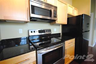 Apartment for rent in Lindenwood Lofts - 1 Bedroom, 1 Bath, Saint Louis, MO, 63109