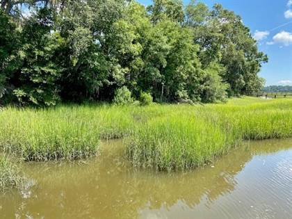 Lots And Land for sale in Lot 27 NE Brittem Way Priester Est Way NE, Townsend, GA, 31331