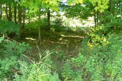 Lots And Land for sale in TBD Johnson, Chatham, MI, 49816