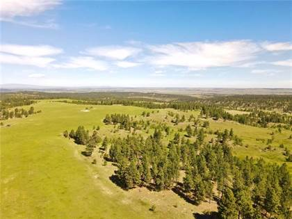 Lots And Land for sale in Tbd Bender Rd, Roundup, MT, 59072
