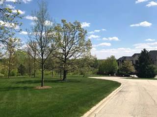 Land for sale in Lot #10 Plattner Court, Mokena, IL, 60448