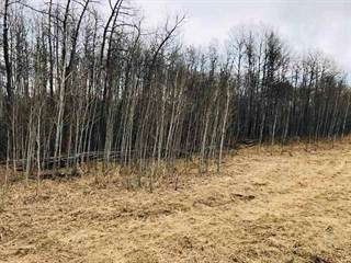 Land for sale in 9A-53509 - Highway 43, Spruce Grove, Alberta