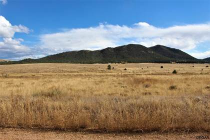 Lots And Land for sale in 1048 Blazing Saddle Trail, Cotopaxi, CO, 81223