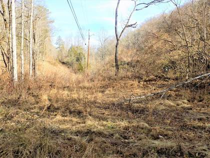 Lots And Land for sale in 900 Long Branch, Hallie, KY, 41821