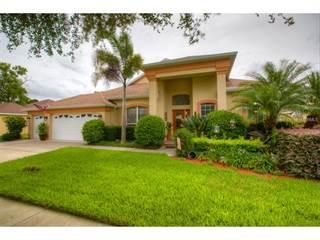Single Family for sale in 1111 SWEET BREEZE DRIVE, Brandon, FL, 33594