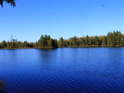Lots And Land for sale in 7149W BLUE HERON RIDGE RD, Mercer, WI, 54547
