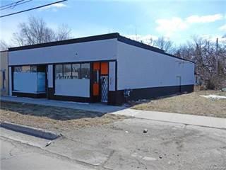 Comm/Ind for sale in 27317 MICHIGAN Avenue, Inkster, MI, 48141