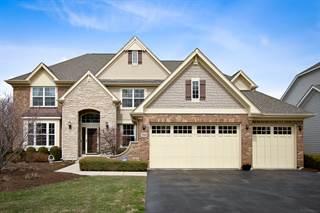 Single Family for sale in 1700 Creeks Crossing Drive, Algonquin, IL, 60102