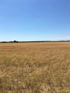 Lots And Land for sale in 100ac CR 139, Aspermont, TX, 79502