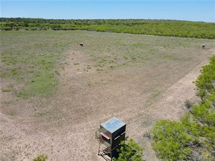 Farm And Agriculture for sale in 960 PR 763, Brady, TX, 76852