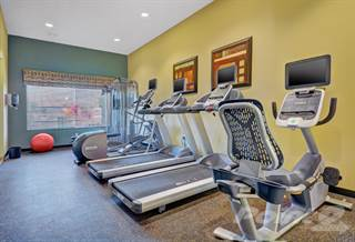 Houses Apartments for Rent in San Diego 607 Rentals in San Diego