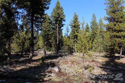 Lots And Land for sale in 107 E Minnow Court, Libby, MT, 59923