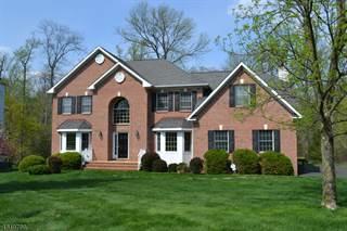 Single Family for sale in 16 SCHINDELARWOODS WAY, Warren, NJ, 07059