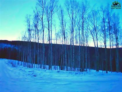 Lots And Land for sale in 1529 TALL BIRCH LANE, Fairbanks, AK, 99712