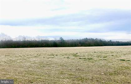 Lots And Land for sale in 0 E LINE ROAD, Delmar, MD, 21875