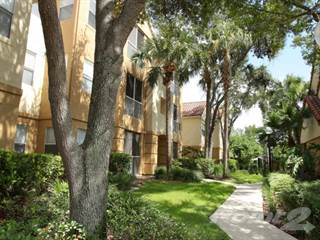 Apartment for rent in Promenade at Carillon - C1, St. Petersburg, FL, 33716
