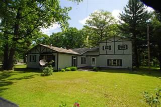 Single Family for sale in 5878 N RED OAK Road, Lewiston, MI, 49756