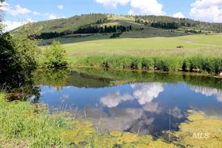 Farm And Agriculture for sale in 39305 S Wheeler Road, Latah, WA, 99018