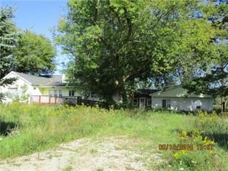 Single Family for sale in 300 N HUNT Road, Carsonville, MI, 48419