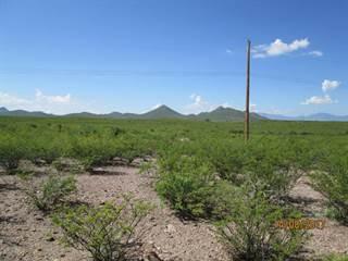 Land for sale in 7.2 Acres Diamond Acres, Tombstone, AZ, 85638