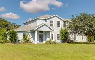 Single Family for sale in 32807 WOLFS TRAIL, Sorrento, FL, 32776