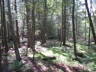 Land for sale in 41 LAKEWOOD COUNTRY LANE, Northern Bruce Peninsula, Ontario, N0H 1W0