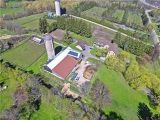 Farm And Agriculture for sale in 345 Freelton Rd, Hamilton, Ontario