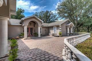 Single Family for sale in 5951 US Hwy 41, Morriston, FL, 32668