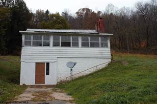 Single Family for sale in 418 Union Street, Webster Springs, WV, 26288