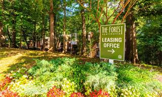 Apartment for rent in The Forest Apartments - 1 Bedroom, Rockville, MD, 20851