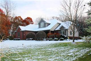 Single Family for sale in 7085 LEDGEWOOD Drive, Tyrone, MI, 48430