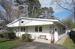 Multi-family Home for sale in 53 S BIGGS Street, Belleville, MI, 48111