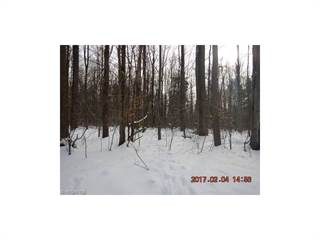 Land for sale in Matson Rd, Geneva, OH, 44041