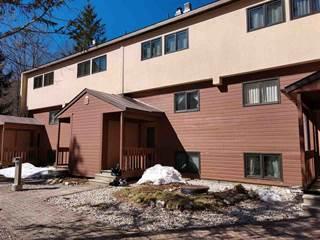 Condo for sale in 768 East Mountain Road Common B2, Killington, VT, 05751
