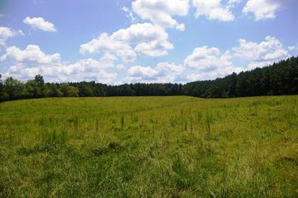 Farm And Agriculture for sale in 14400 Hwy 98 East, Smithdale, MS, 39664