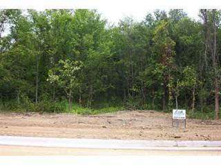 Land for sale in 8211 Woodhaven, Rockford, IL, 61107