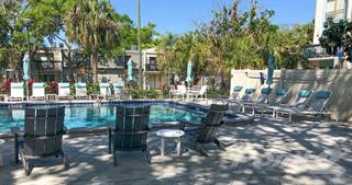 Apartment for rent in The Standard at 2690 - C2, Clearwater, FL, 33759