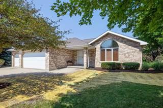 Single Family for sale in 3100 West Nettle Creek Drive, Morris, IL, 60450