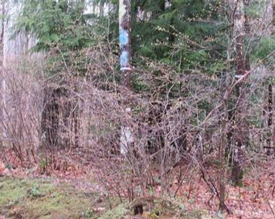 Lots And Land for sale in 9+ Acres Usimaki - Vuk Rd, L'Anse, MI, 49946