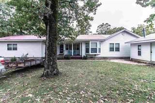 Single Family for sale in 73573 Hwy 21N, Van Buren, MO, 63965