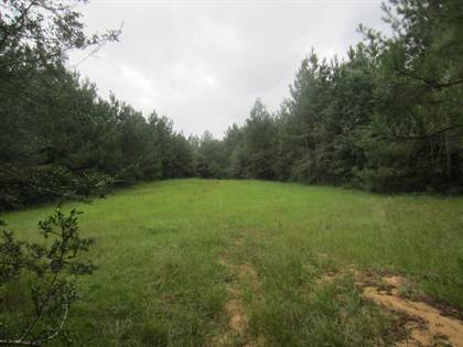 Lots And Land for sale in 135 Ac MOL Stringer Bullock Rd., Columbia, MS, 39483