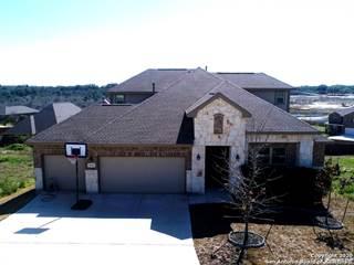 Single Family for sale in 2910 TORTUGA VERDE, San Antonio, TX, 78245