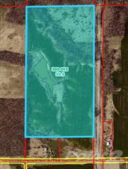 Land for sale in Rt 14 McLeansboro IL 62859, McLeansboro, IL, 62859