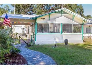 Single Family for sale in 6112 Riverside Drive, Yankeetown, FL, 34498
