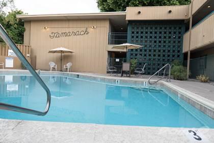 Apartment for rent in Tamarack Apartments, Phoenix, AZ, 85013