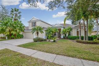 Single Family for sale in 19311 AUTUMN WOODS AVENUE, Tampa, FL, 33647